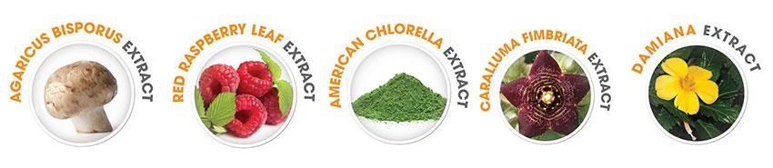 Thuốc giảm cân OZ Slim được chiết xuất từ những thảo dược tự nhiên