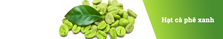 Thành phần của viên uống giảm cân Slim Max USA - Hạt cà phê xanh