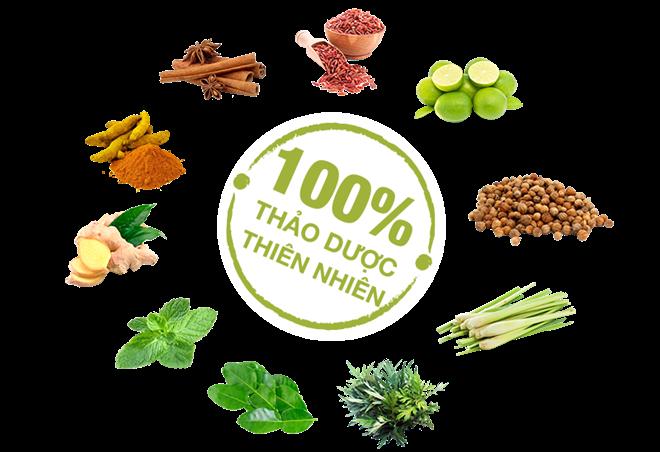 Trà giảm cân Nấm với 100% thành phần thảo dược tự nhiên