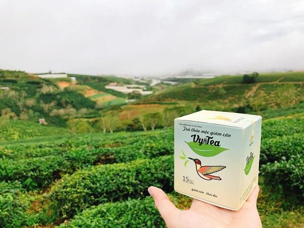 Trà giảm cân Vy&Tea giúp đào thải độc tố và mỡ thừa ra khỏi cơ thể